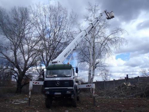 Pílenie a orezávanie stromov, Nitra